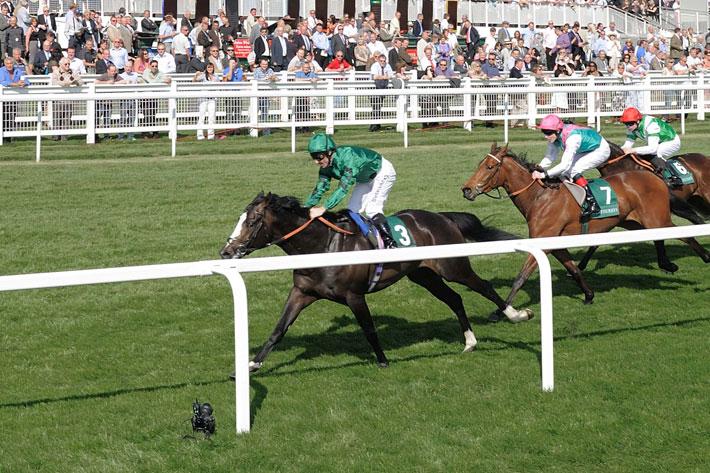 Other Racecourse Projects - Racecourses - BAILEYGOMM